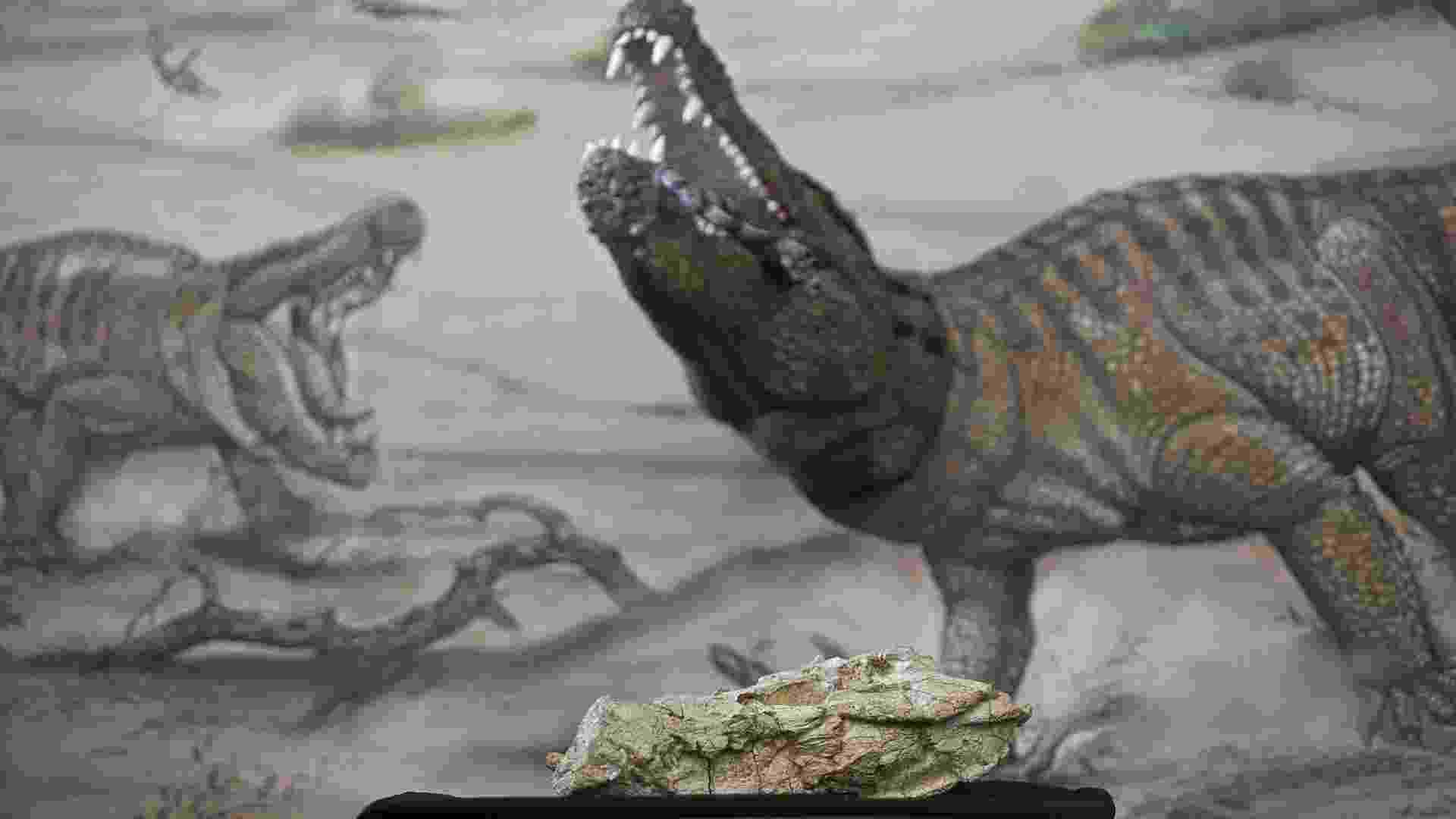 15.jan.2014 - Pesquisadores do Museu de Ciências da Terra/CPRM e do Museu Nacional/UFRJ apresentam o mais antigo réptil fossilizado encontrado no Estado do Rio de Janeiro, o Crocodilo Guerreiro (Sahitisuchus fluminensis) - Julio Cesar Guimaraes/UOL