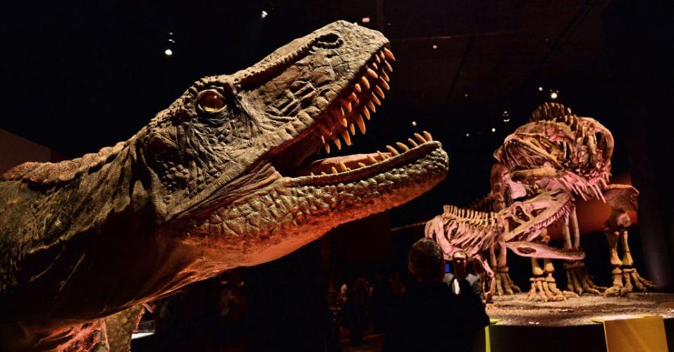 23.jan.2014 - Réplica de Fasolasuchus, espécie de dinossauro que possuí características de crocodilo, é exposto nesta quinta-feira (23), no Museu de Ciência e Arte de Cingapura, antes da abertura da exposição