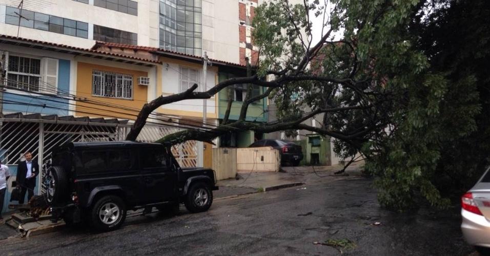 24.jan.2014 - Uma árvore caiu na rua Barão do Bananal, na Pompeia, zona oeste de São Paulo, durante o temporal que atingiu a capital na tarde desta sexta-feira (24). Ao menos 50 árvores caíram na cidade apenas hoje, de acordo com a Prefeitura de São Paulo