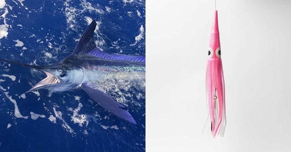 A isca lula é ideal para a pesca de superfície em alto mar, a cerca de 80 km da costa. As iscas menores, como a de 22 cm da foto, servem para peixes como o dourado de mar e o marlin (foto). Os tamanhos vão de 22 cm a 32 cm, e os preços variam de R$ 27 a R$ 200 de acordo com o modelo e o tamanho. Na imagem, uma isca da marca Offshore Angler, que custa cerca de R$ 27