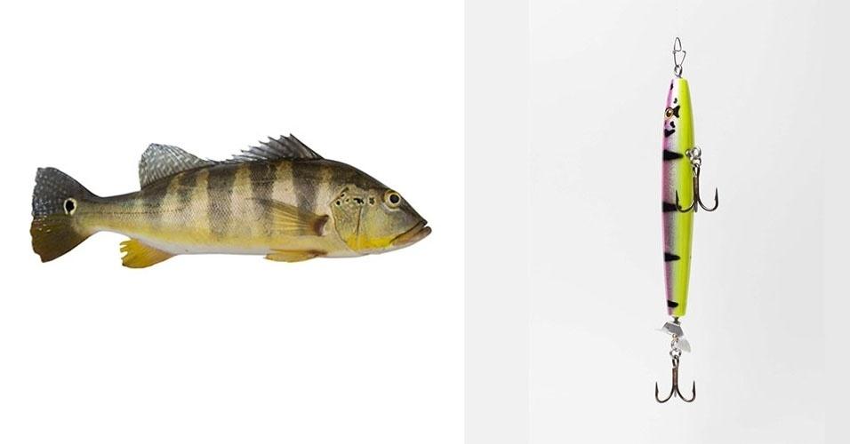 """Isca de superficie com hélice, muito usada na pesca do tucunaré (foto). Conforme a isca é recolhida, sua hélice se movimenta, fazendo um zumbido que atrai o peixe. Na imagem, isca modelo """"pavon prop"""" da marca Caribelures, de 18 cm e preço de R$ 70"""