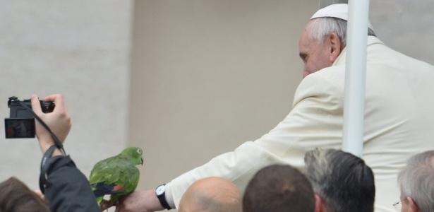 """Papagaio """"Amor"""" ficou famoso ao aparecer com o Papa Francisco e fará previsões para a Copa"""