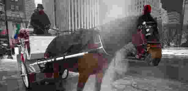 Cavalo usa vapor para se esquentar em Nova York - Carlo Allegri/Reuters - Carlo Allegri/Reuters