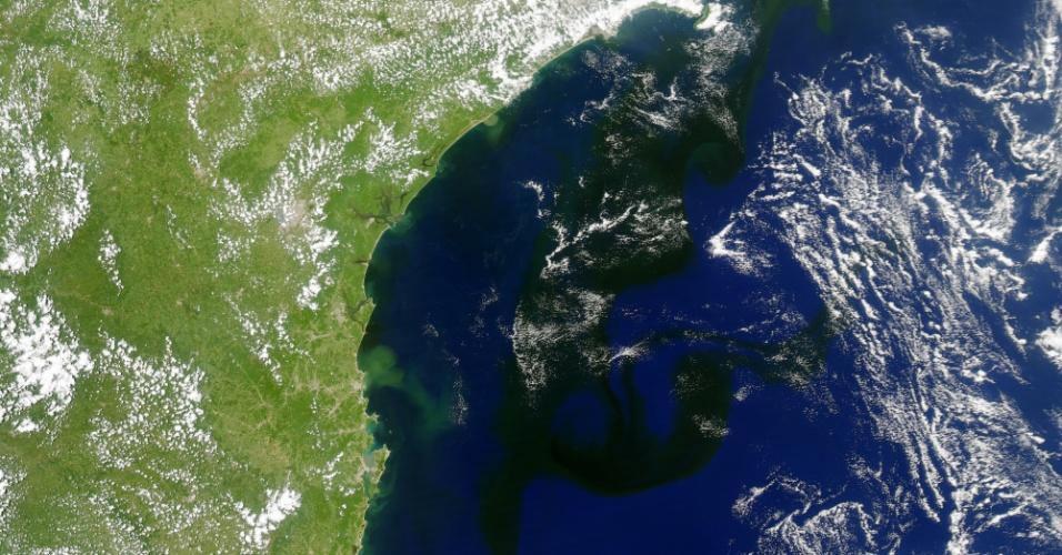Em 19 de janeiro de 2014, satélite Aqua da Nasa (Agência Espacial Norte-Americana) capturou esta imagem que mostram vários organismos microscópicos ao largo da costa sudeste do Brasil, as algas que invadiram o litoral do Rio de Janeiro. Na imagem, as águas do Atlântico Sul estão escuras, com manchas que se estendem por 800 quilômetros de sul para nordeste na plataforma continental. Os pontos brancos sobre o mar e interior são nuvens