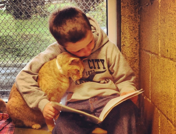 O menino Colby Procyk lê suas histórias favoritas para um dos gatos do abrigo do condado de Berks, na Pensilvânia, como parte do programa Book Buddies que incentiva a leitura e a adoção a animais