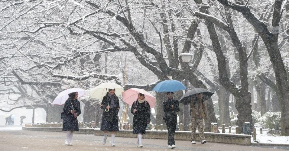 14.fev.2014 - Jovens caminham sob árvores cobertas de neve em parque de Tóquio, nesta sexta-feira (14). Ventos frios devem atingir a área metropolitana de Tóquio nos próximos dias, trazendo cerca de 10 cm de neve