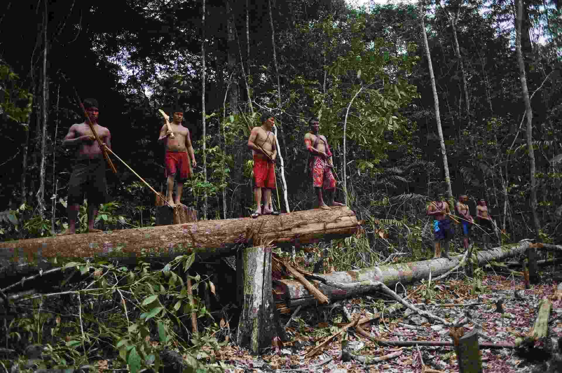 17.fev.2014 - índios da tribo Munduruku encontrar uma área na selva demarcada pelos garimpeiros ilegais durante uma busca por todo o território da tribo - Lunae Parracho/Reuters