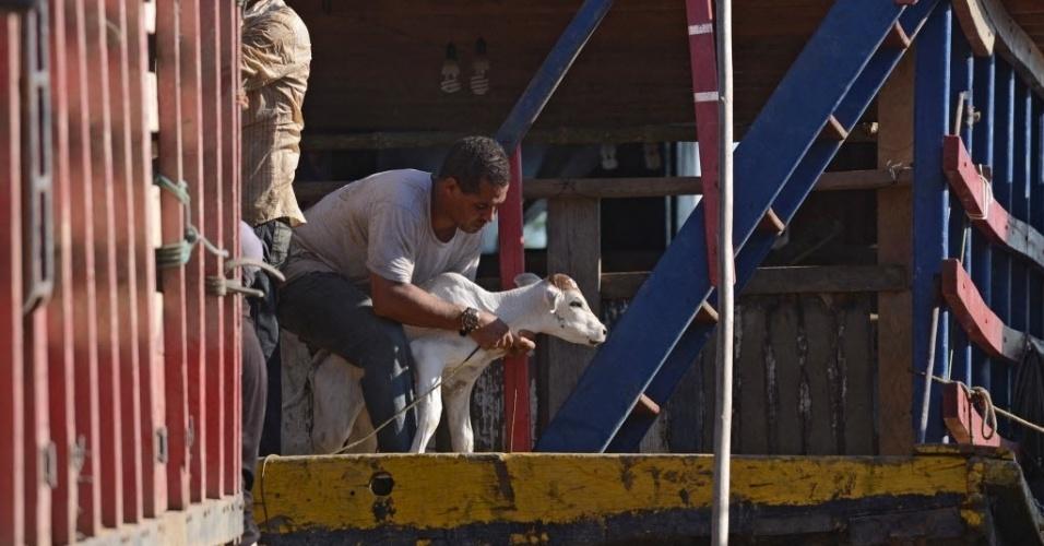 18.fev.2014 - Homem coloca bezerro em caminhão após resgatá-lo em área inundada próximo ao rio Mamoré, em Trinidad, na Bolívia