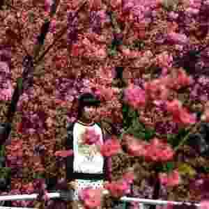 1º.mar.2014 - Menina em meio a flores de cerejeiras no zoológico Yuantong, em Kunming, na província chinesa de Yunnan - Yang Zongyou/XinHua