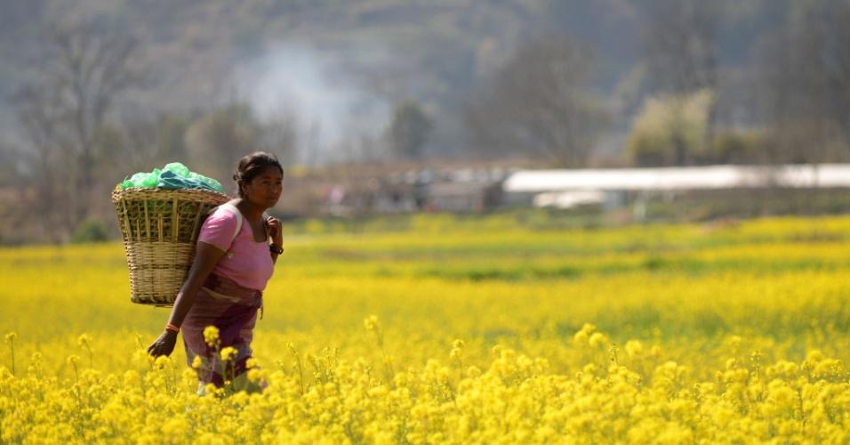 3.mar.2014 - Uma fazendeira do Nepal carrega uma cesta de vime de suprimentos como ela retorna para sua casa na aldeia, nos arredores de Kathmandu Khokana, nesta segunda-feira (3)