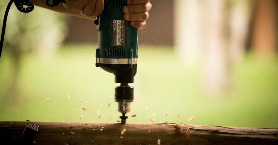 Para produzir shiitakes, são necessárias toras de eucalipto sem rachaduras ou cortes. Estes pedaços de árvores são furados para receber as sementes que se transformarão em cogumelos. Recomenda-se que os furos tenham 18 centímetros de espaço entre si para que o shiitake possa se desenvolver adequadamente