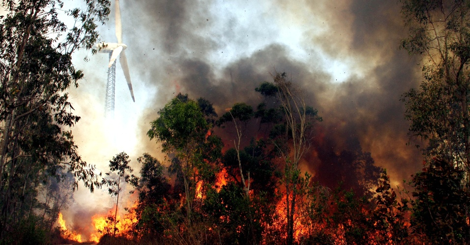 19.mar.2014 - Incêndio florestal atinge as colinas do Tirumala, no estado indiano de Andhra Pradesh, nesta quarta-feira (19)