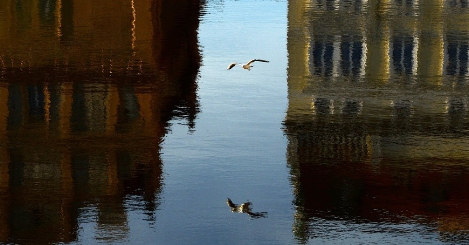 20.mar.2014 - Uma gaivota voa sobre parte do rio Vltava nesta quinta-feira (20), durante um pôr do sol quente em Praga, na República Checa