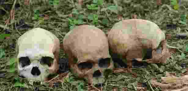 Crânios humanos são colocados no chão na cidade de Ibadan, no sudoeste da Nigéria - Pius Utomi/AFP