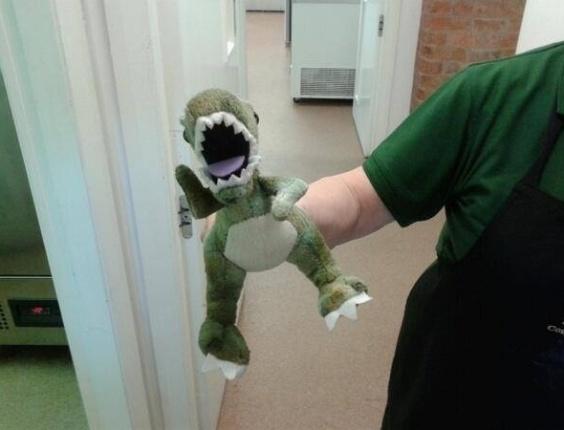 24.mar.2014 - Este dinossauro foi derrubado no parque Bradgate, no Reino Unido, e seu dono está tentando encontrá-lo