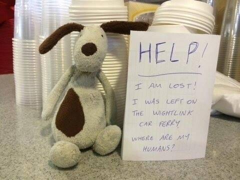 24.mar.2014 - Na fotografia, cão aparece ao lado de bilhete perguntando onde estão seus humanos, em uma tentativa engraçada de conseguir mais visualizações e chegar até seu dono