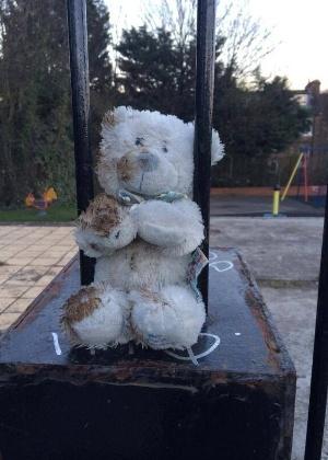 24.mar.2014 - O urso que era branco e se sujou de lama foi encontrado no Dartmouth Park, em Londres, na Inglaterra