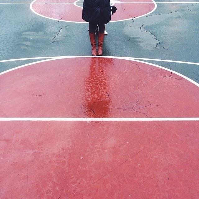 25.mar.2014 - O fotógrafo canadense Andrew Knapp faz uma brincadeira com seus seguidores no Instagram, pedindo para que eles encontrem o seu cão Momo, um border collie preto, em fotos onde ele aparece escondido nos mais diversos lugares. O projeto ?Find Momo? surgiu justamente por causa do comportamento do animal, que adora se esconder. Até agora, Knapp tem mais de 147 mil seguidores na rede social e o trabalho já virou livro