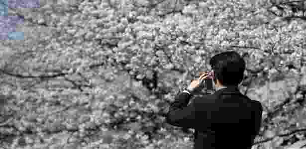 Homem fotografa flores de cerejeira em Tóquio, no Japão, em 2014: a época de floração é marcada por festas no país - Toru Hanai/Reuters - Toru Hanai/Reuters