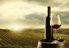Quer fazer seu próprio vinho? Condomínio e hotel oferecem vinhedo e adega - Thinkstock