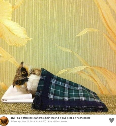 Usuários do Instagram começaram a publicar autorretratos supostamente registrados depois do sexo: as hashtags que identificam essas imagens são 'aftersex' e 'aftersexselfie'. A superexposição também deu origem a brincadeiras (caso desta acima), como 'selfies' em que brinquedos e animais de estimação parecem ter feito sexo segundos antes do clique