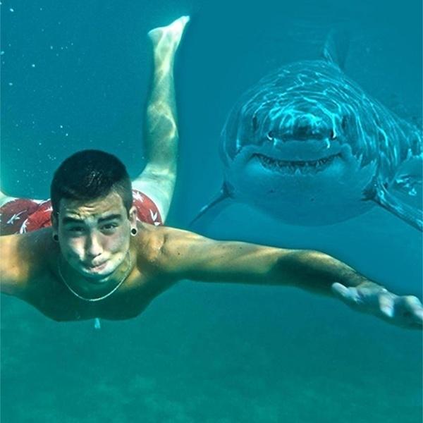 Neste photobomb aquático, o rapaz teve a companhia de um tubarão que também nadava no mesmo local que ele