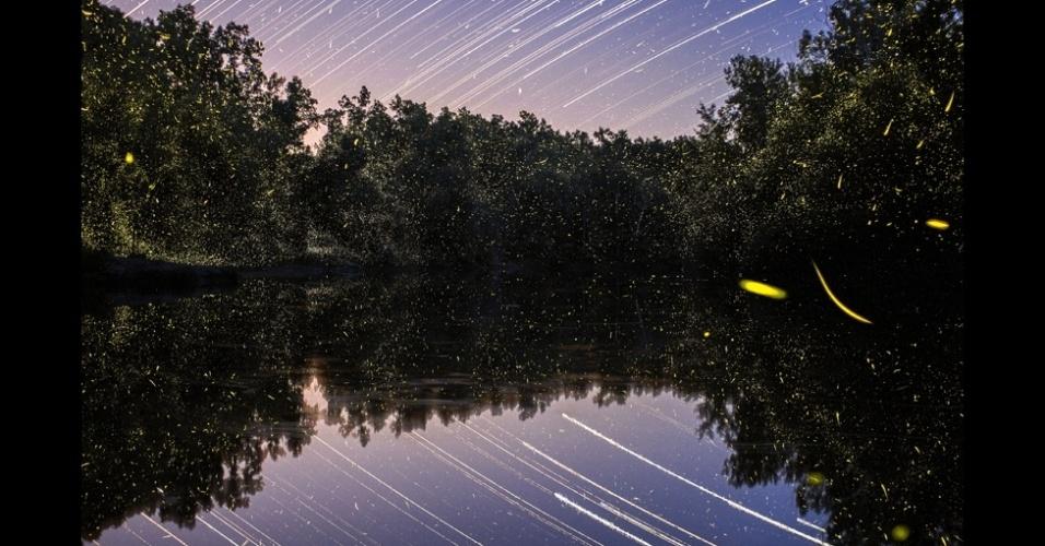 19.abr.2014 - O fotógrafo Vincent Brady, 25, brincou com o tempo de captura da luz de sua câmera para fazer uma série de fotos de vaga-lumes. As fotos foram feitas em dois locais, o lago de Ozarks, no estado americano do Missouri, e no Grand Ledge, em Michigan. A área tem uma grade diversidade de fauna. Só de besouros são mais de 2 mil espécies