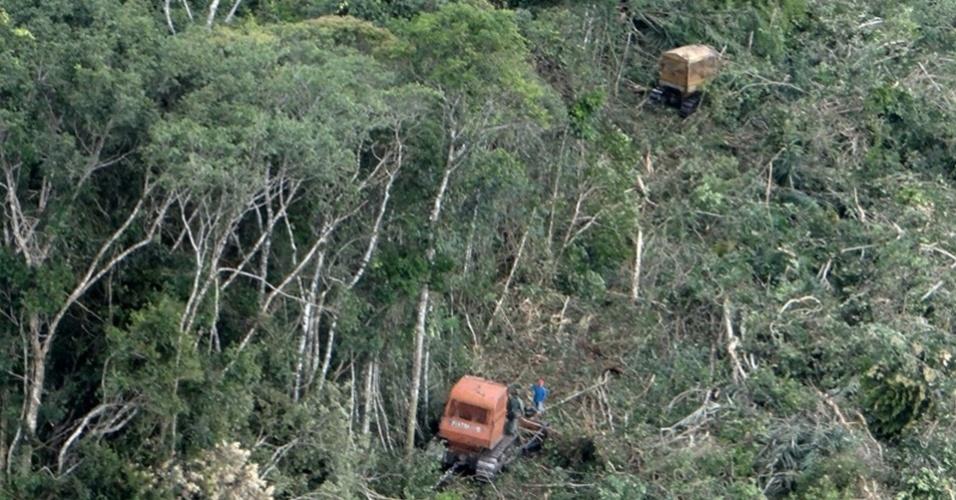Alertas de desmatamento na Amazônia Legal caem 20%, diz Inpe