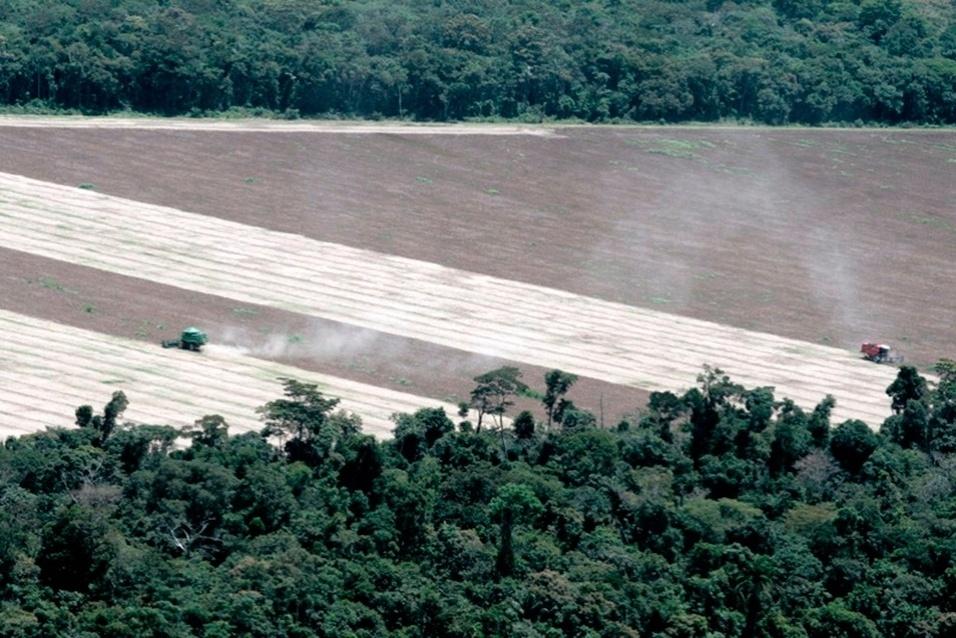 abr.2014 -Cuiabá (04/04/2014) - O Ibama em Mato Grosso está fiscalizando o descumprimento de embargo de áreas desmatadas ilegalmente em anos anteriores. A operação denominada Commodities monitora os polígonos embargados, e apreende maquinários e grãos. Os proprietários e arrendatários são autuados por impedir a regeneração da floresta e por descumprimento de embargo, além de ter de efetuar as medidas fitossanitárias com as sobras de lavouras. A última ação da operação foi na região norte de Mato Grosso, em uma fazenda localizada no município de Nova Ubiratã, a 532 quilômetros de Cuiabá. A área estava embargada devido a desmatamento ilegal entre 2011 e 2012 . A equipe do Ibama constatou que o proprietário não respeitou o embargo em 596,7 hectares e continuou a utilizar a área. No local, que deveria ser a reserva legal da propriedade, com a floresta nativa em regeneração, houve plantio de soja na safra 2013/14. A lavoura de soja foi monitorada por agentes do Ibama que, ao final da colheita, apreenderam toda a produção, calculada em 1.790 toneladas (equivalente a 30 mil sacas). Os grãos foram depositados em armazéns da região e deverão ser doados, no final da tramitação processual, para programas sociais. Além da apreensão dos bens e produtos, tanto o proprietário quanto o arrendatário da área, foram autuados em mais de R$ 6 milhões