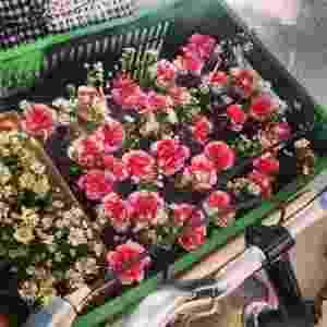 Empresa A Bela do Dia entrega flores em bicicletas na cidade de São Paulo - Divulgação