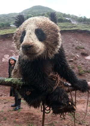 8.mai.2014 - Panda selvagem é removido da aldeia de Yimudi para a Reserva Natural Nacional de Dafengding, no sudoeste da China