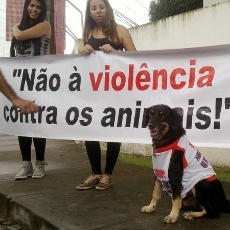 15.mai.2014 - Ativistas fazem protesto contra uso de animais em teste em Salvador - Fedaban/Divulgação