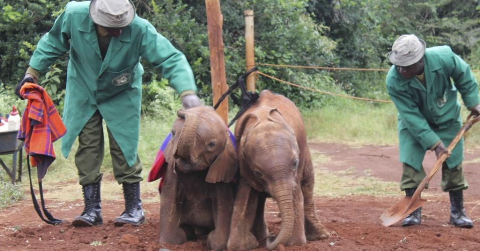 16.mai.2014 - Filhotes de elefante recebem cuidados em um refúgio no Parque Nacional de Nairóbi, nesta sexta-feira (16), no Quênia. A mãe dos animais foi vítima de caçadores clandestinos ligados ao comércio ilegal de marfim