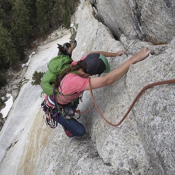 29.mai.2014 - Companheiros de aventura, o alpinista Dean Potter e a cadela Whisper não se desgrudam! Nem na hora de escalar uma montanha...
