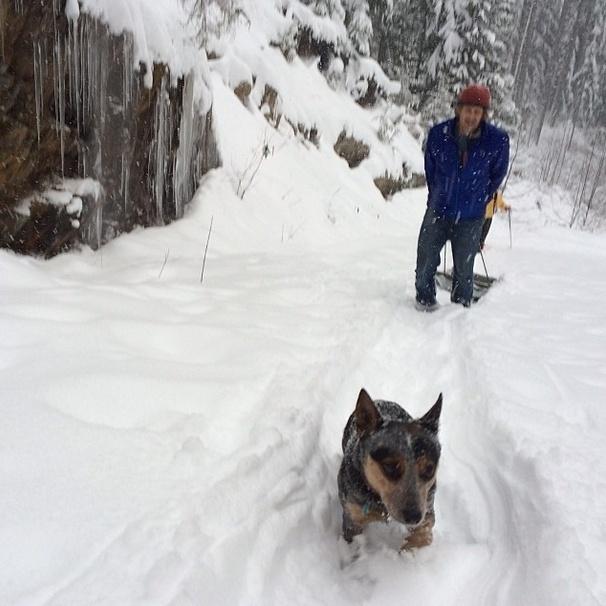 29.mai.2014 - Faça chuva, faça sol ou faça neve, o alpinista Dean Potter e a cadela Whisper encaram uma aventura nas montanhas