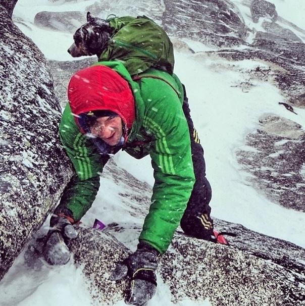 29.mai.2014 - O alpinista Dean Potter leva a cadela Whisper, de quatro anos de idade, para escalar montanhas mesmo com uma tempestade de neve. Sinal que os melhores amigos não temem a altura e nem o frio!