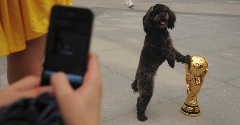 12.jun.2014 - Cachorro com uma presilha com a bandeira do Brasil posa para foto tocando uma réplica da taça da Copa do Mundo Fifa durante celebração da abertura do Mundial que acontece no Brasil, em Wuhan, na província de Hubei, nesta quinta-feira (12)