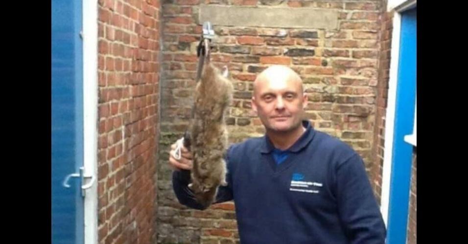 25.jun.2014 - Uma nova raça de ratazanas, imunes a venenos comumente usados no combate a roedores graças a uma mutação genética, está se espalhando no Reino Unido segundo cientistas