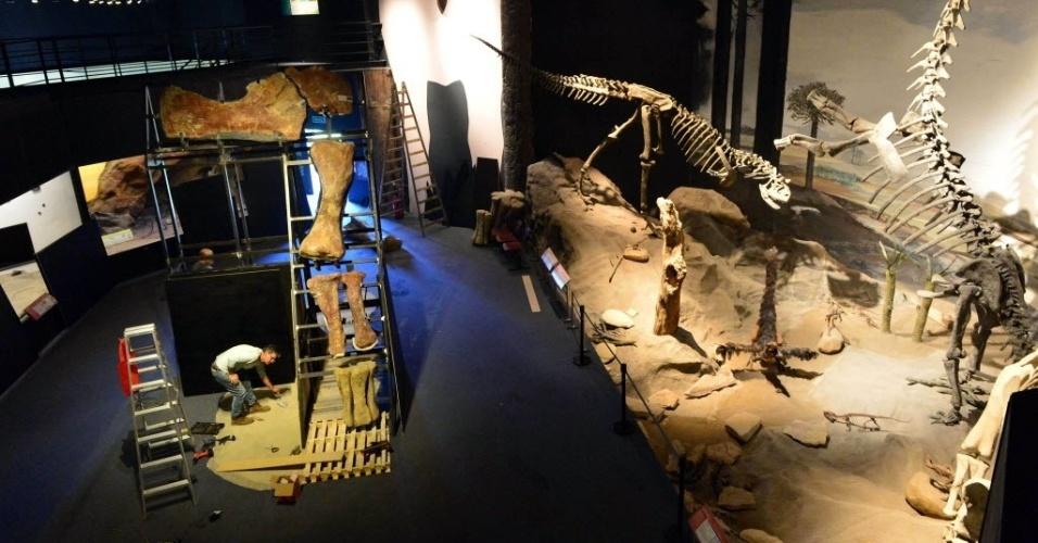 27.jun.2014 - Funcionário prepara exibição de fósseis da maior espécie de dinoussauro já descoberta