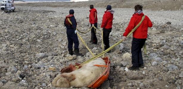 Urso polar morto é levado após o ataque a um grupo de turistas britânicos que visitava o arquipélago - Arild Lyssand/Sysselmannen/AFP - 5.ago.2011