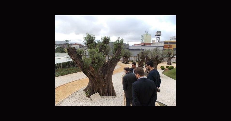 23.jun.2014 - Bispo Edir Macedo visita Jardim das Oliveiras, onde foram plantadas 12 árvores importadas do Uruguai, no Templo de Salomão, na região central de São Paulo