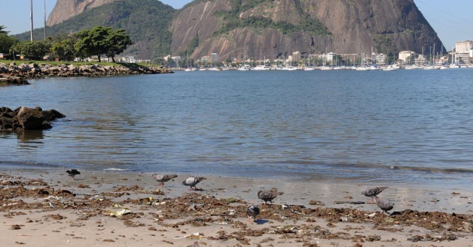 31.jul.2014 - A promessa do governo do estado do Rio de despoluir 80% da Baía de Guanabara até 2016, conforme compromisso assumido com o Comitê Olímpico Internacional para sediar as Olimpíadas, não vai ser cumprida. A nova previsão é atingir a meta de 80% da população fluminense com  acesso a serviços de saneamento básico em 2018 -  o esgoto doméstico é a principal fonte de poluição da baía