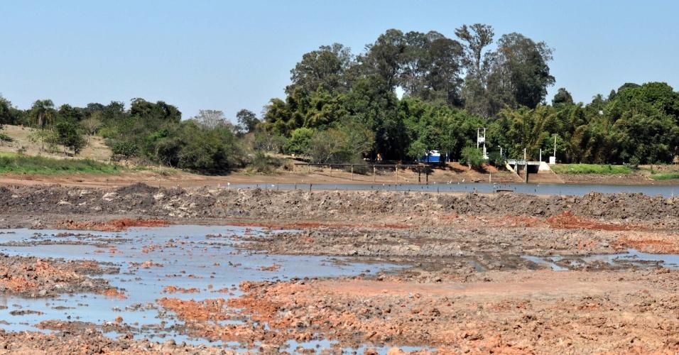 7.ago.2014 - O nível da represa Cotrins, em Artur Nogueira, no interior de São Paulo, responsável pelo abastecimento de 80% das casas da região, está abaixo do nível recomendado por especialistas. A cidade enfrenta a pior crise em 10 anos, causa pela falta de chuva na região metropolitana de Campinas