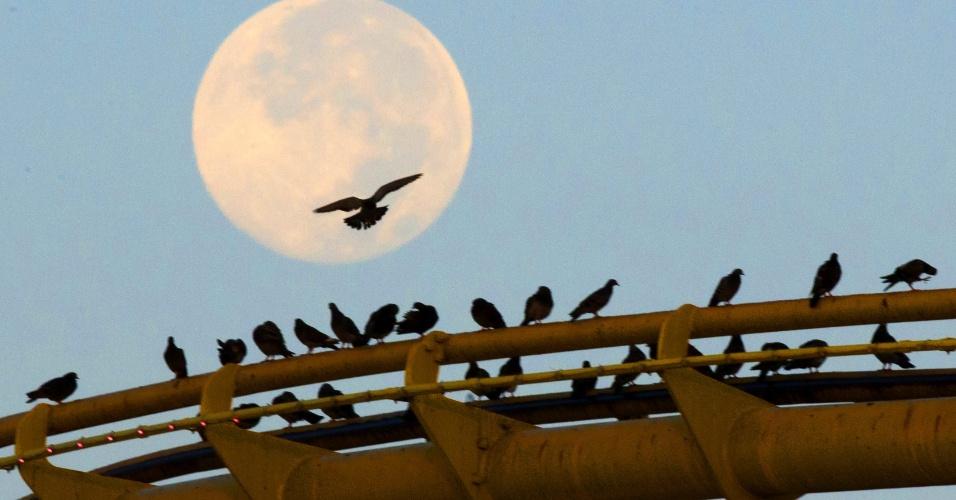 11.ago.2014 - Pássaros pousam sobre o trilho da montanha russa no pier de Santa Monica, na Califórnia, tendo ao fundo a superlua. O fenômeno avistado nesta segunda-feira (11) é o mais intenso e brilhante, segundo astrônomos da Nasa (agência espacial americana)