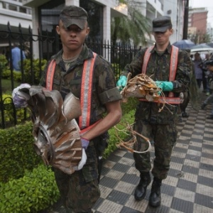 Militares carregam destroços do avião Cessna 560 XL, que caiu nesta manhã em Santos (SP)