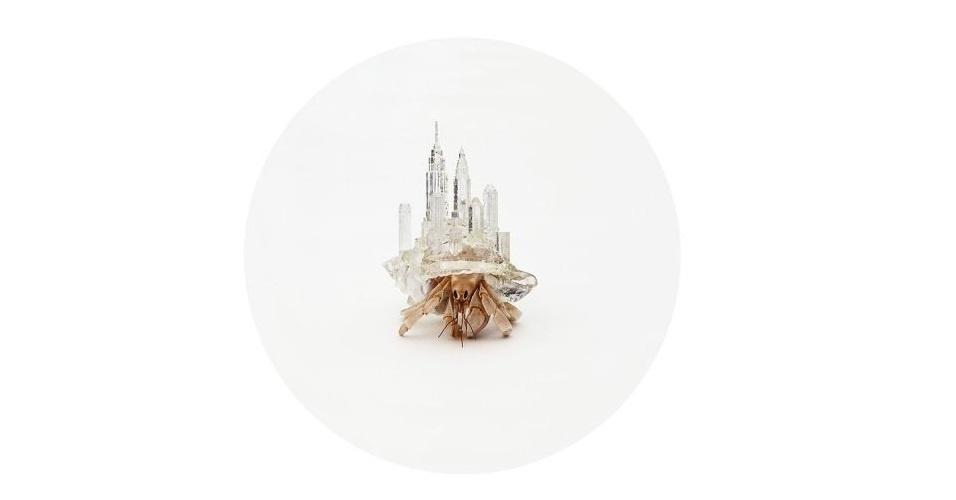 O artista japonês Aki Inomata criou, usando impressoras 3D, réplicas de cidades que servem como casco para caranguejos. Depois que produziu as peças, ele colocou dentro de aquários para que os bichos se adaptassem ao acessório
