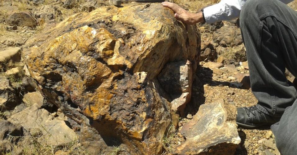18.ago.2014 - Paleontólogos da UFPI (Universidade Federal do Piauí) descobriram que vários troncos de árvores da Floresta Fóssil de Teresina, localizada às margens do Rio Poti, foram atacados por vândalos. O vandalismo foi descoberto no fim de semana (16 e 17 de agosto). Um dos troncos fósseis foi quebrado em várias partes, que foram espalhadas ao longo de 1m². Os paleontólogos acreditam que os vândalos usaram pedras para golpear os fósseis e danificá-los. Não foram encontrados todos os fragmentos e é possível que os vândalos tenham furtado partes dos fósseis danificados. A Floresta Fóssil de Teresina é da Era Paleozoica, possui aproximadamente 270 milhões de anos e plantas fósseis gimnospermas e pteridófitas, petrificadas em posição vertical. A Floresta Fóssil é tombada, mas não possui controle de conservação
