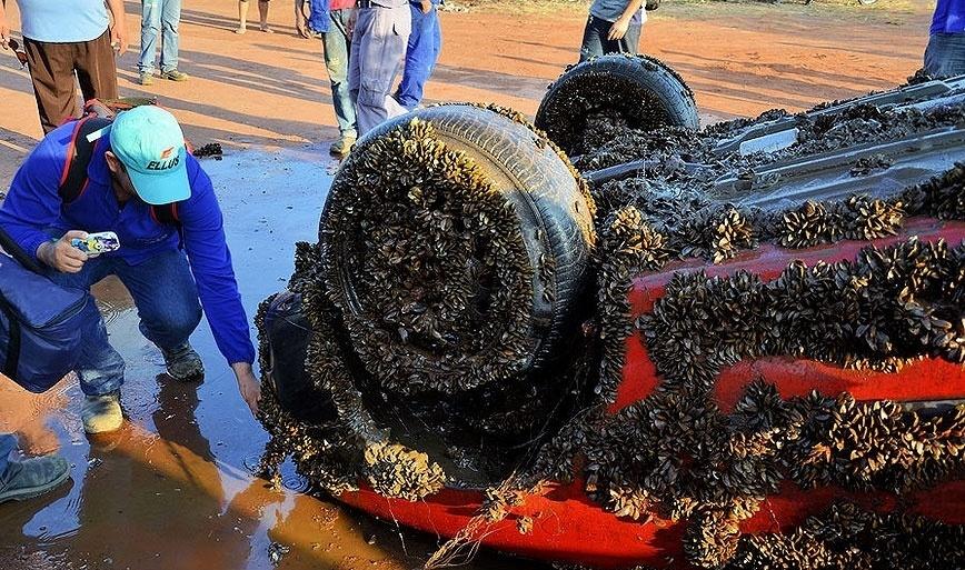 19.ago.2014 - Um carro foi retirado pelo Corpo de Bombeiros do rio Tietê, em Araçatuba (527 km de São Paulo), na segunda-feira (18). O veículo estava sem as placas e coberto por moluscos e algas. O carro foi avistado por moradores que passavam pela região do porto Pio Prado, onde o nível do rio é baixo por causa da estiagem. O veículo vai passar por perícia