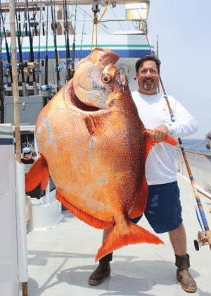 Norte-americano Joe Ludlow posa com o peixe de 82,1 kg -- cabeça do animal é maior que a do pescador