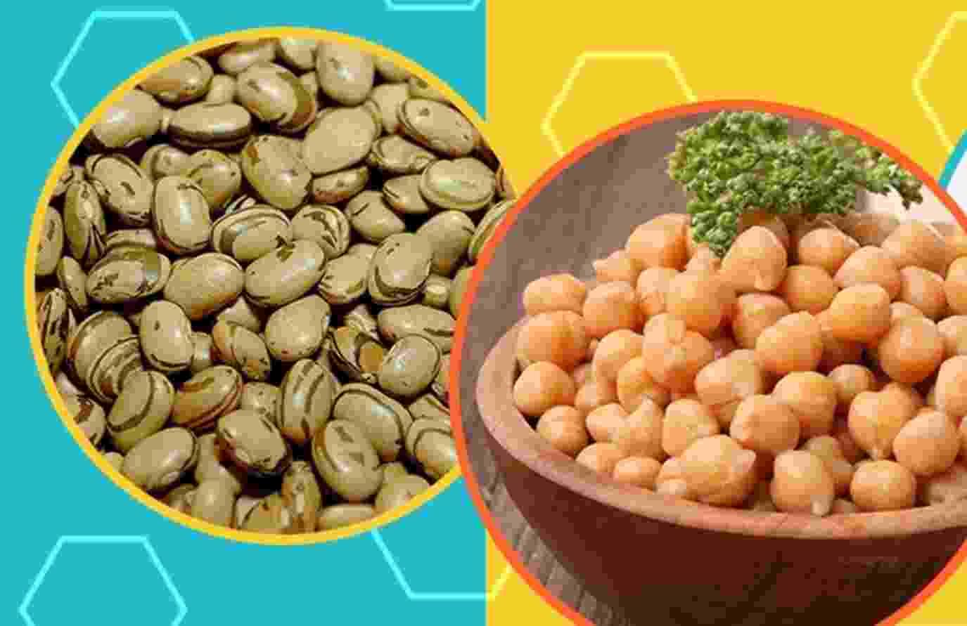 chamadas vegetais ricos em proteínas - Arte UOL